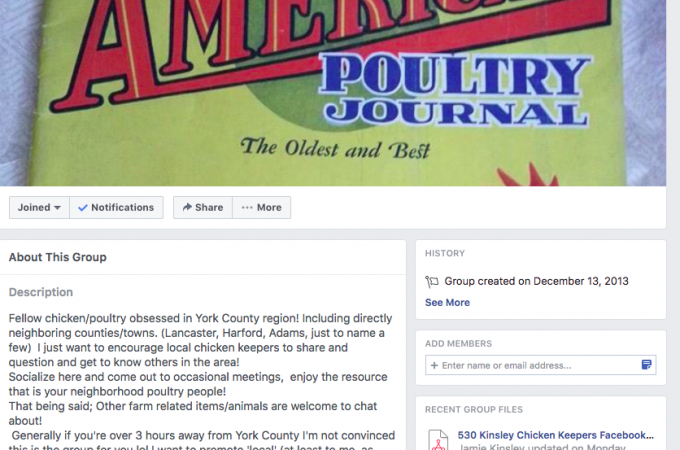 Keepers turn to Facebook to trade poultry advice, including treatment of a hoarse chick