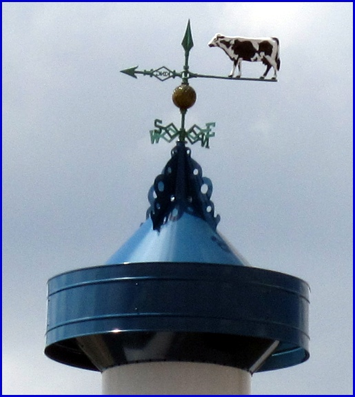 Cow Weathervane on Roof the Susquehanna Bank now Under Construction along Whiteford Road (2013 Photo, S. H. Smith)