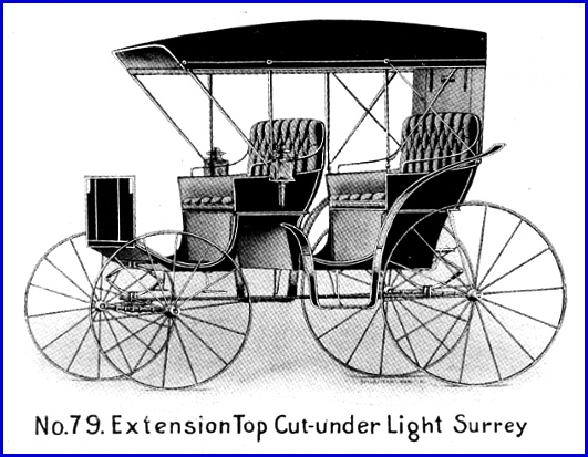No. 79 Extension Top Cut-under Light Surrey from a 1904 Martin Carriage Works Incorporated advertisement (Collections of S. H. Smith)