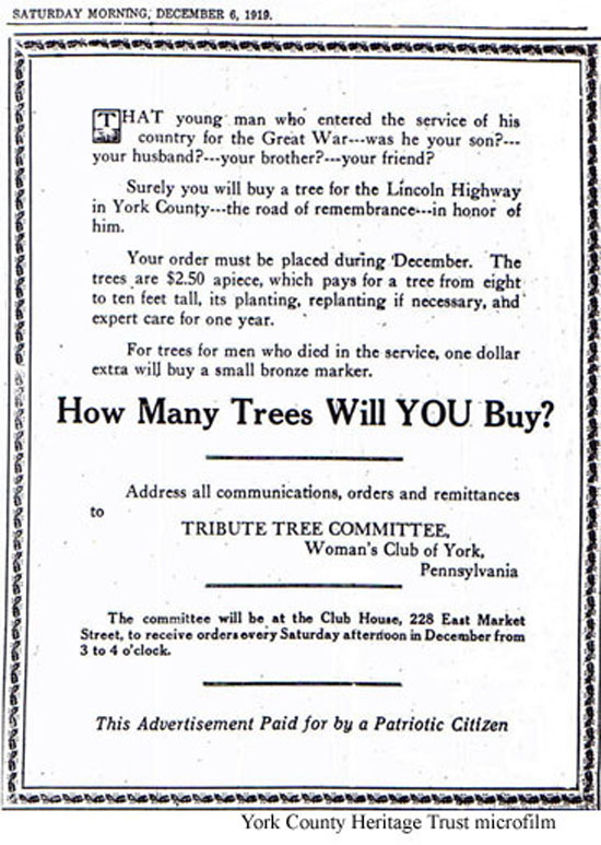 tree ad copy