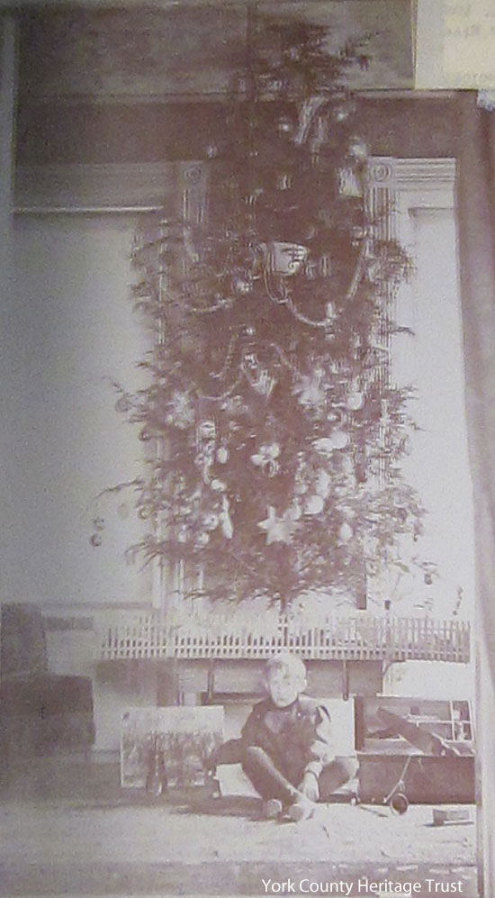 Morris Small's Xmas Tree, Dec. 26, 1898